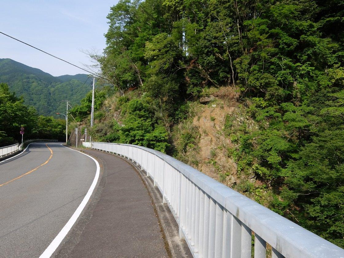 2016-05_tanzawa_mitsuba-dake_jougao-ouge_0031