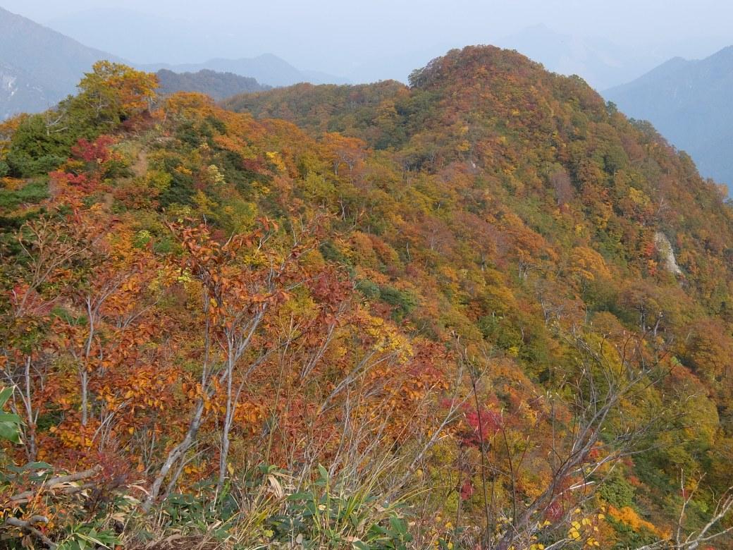 2015-10_tanigawa-dake_0074