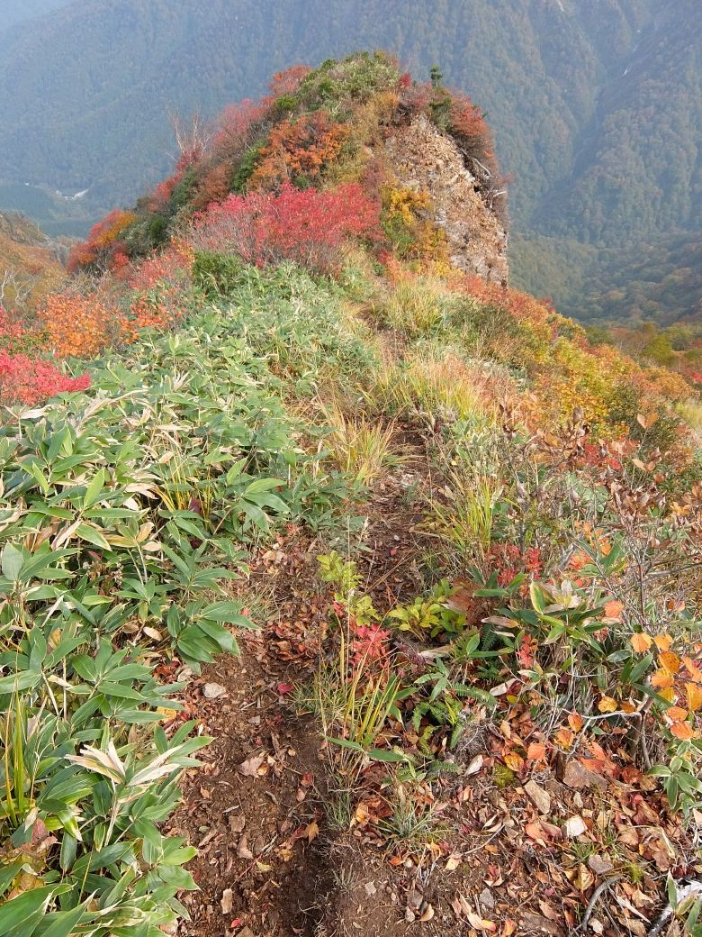 2015-10_tanigawa-dake_0085