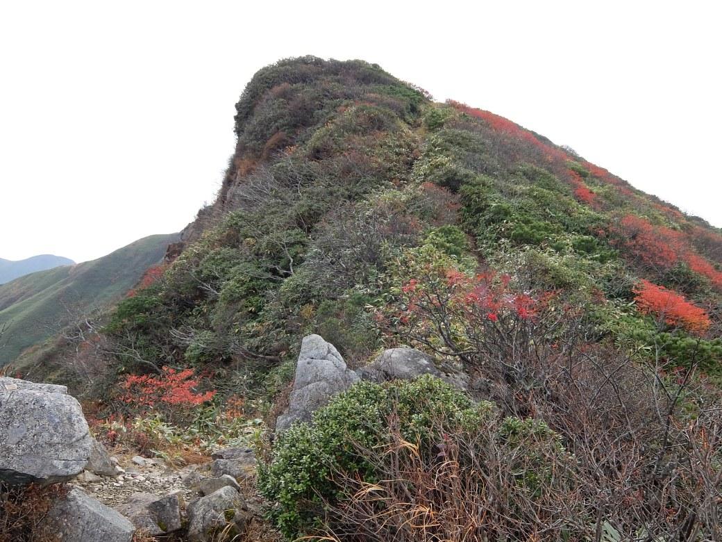 2015-10_tanigawa-dake_0099