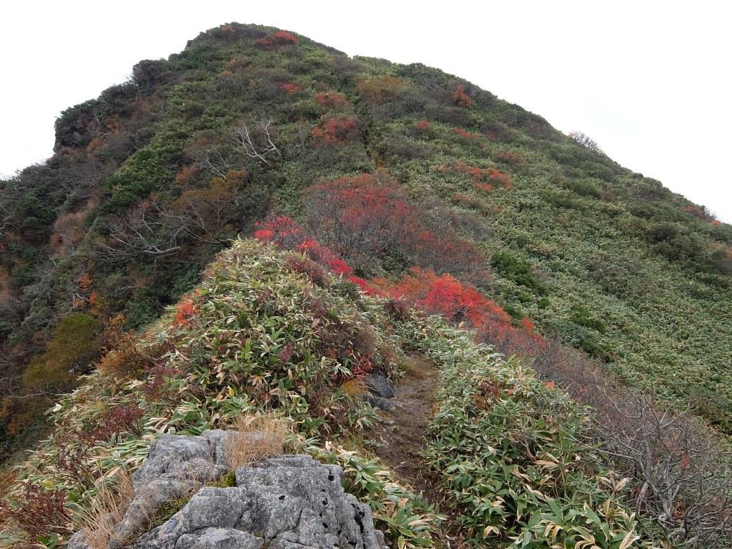 2015-10_tanigawa-dake_0105