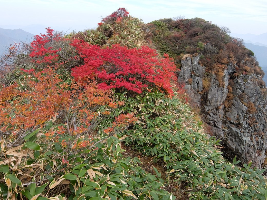 2015-10_tanigawa-dake_0106