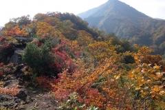 2015-10_tanigawa-dake_0056