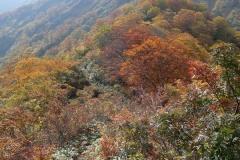 2015-10_tanigawa-dake_0066