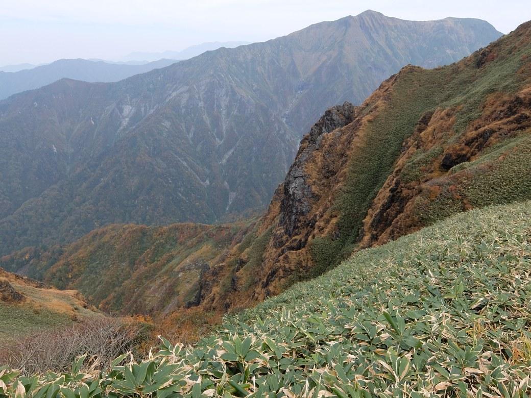 2015-10_tanigawa-dake_0140