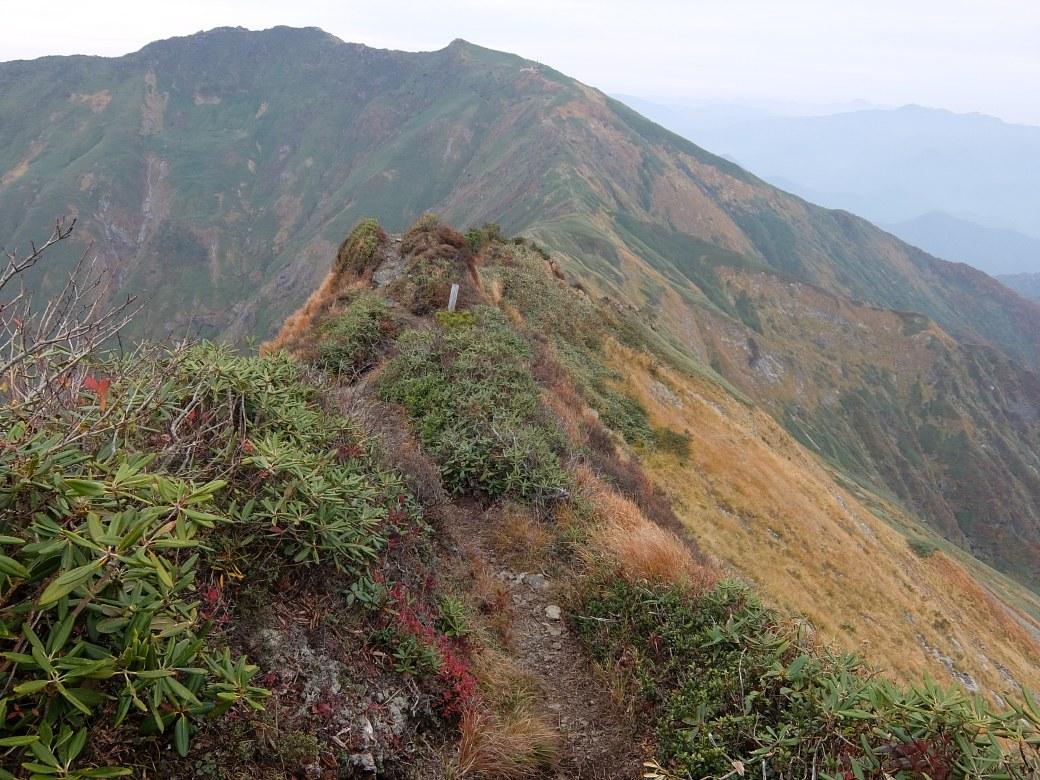 2015-10_tanigawa-dake_0164