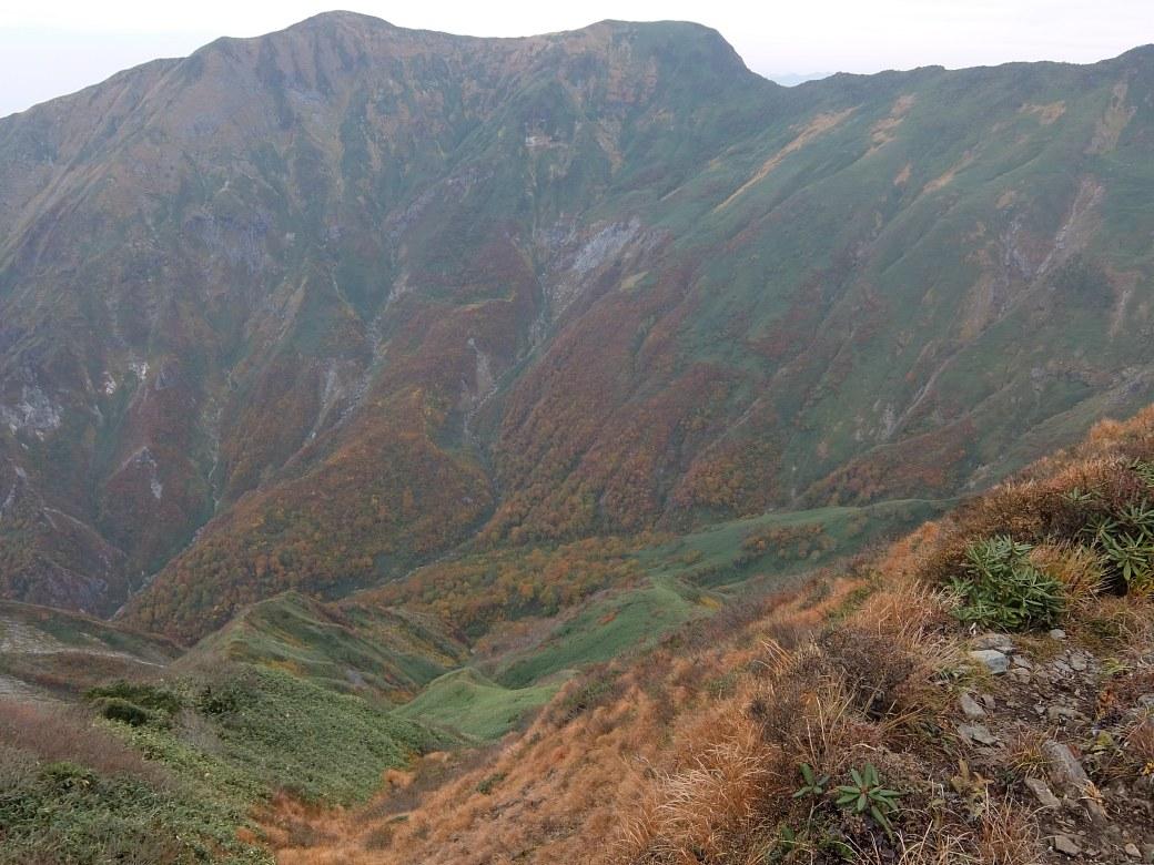 2015-10_tanigawa-dake_0165