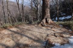 2016-02_kaikoma_0021