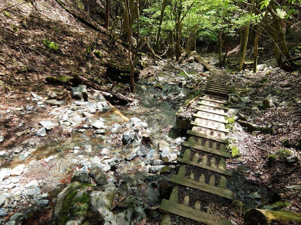 2016-05_tanzawa_0285