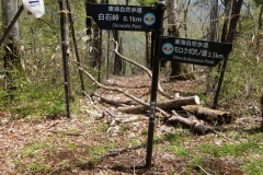 2016-05_tanzawa_0266