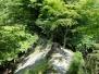 2016-06_丹沢1/寄-鍋割山