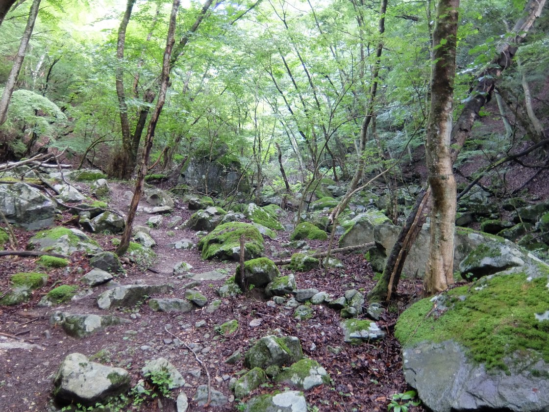 2016-07_azegamaru_0022