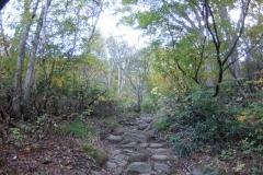 2016-10_makihata_0011