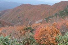 2016-10_makihata_0076
