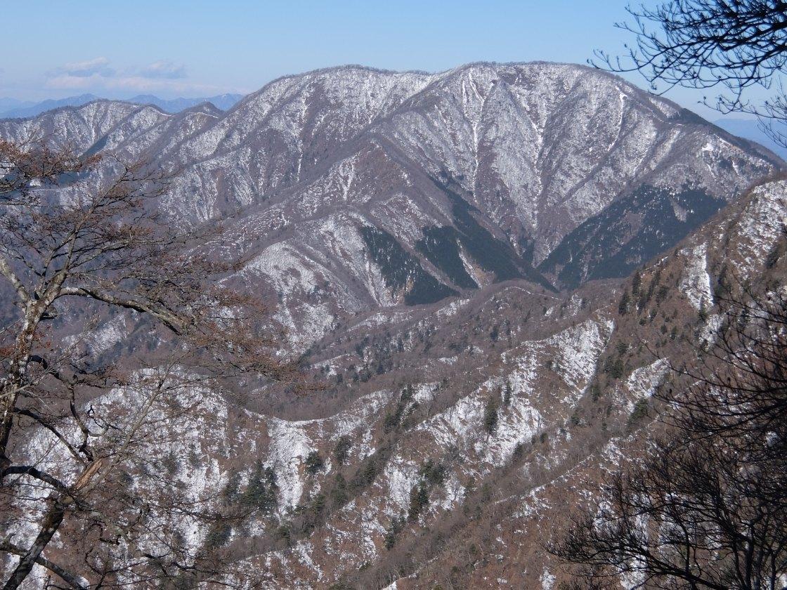 2017-01_hinokibora_0021