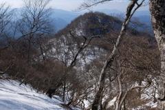 2017-01_hinokibora_0031