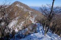 2017-01_hinokibora_0048