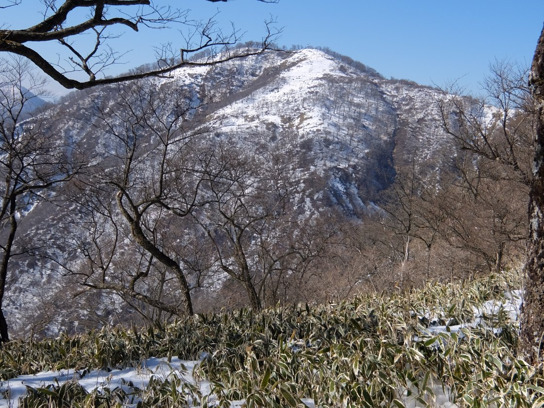 2017-01_tanzawa_0136