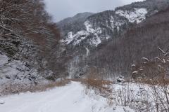 2017-02_senjou_0009