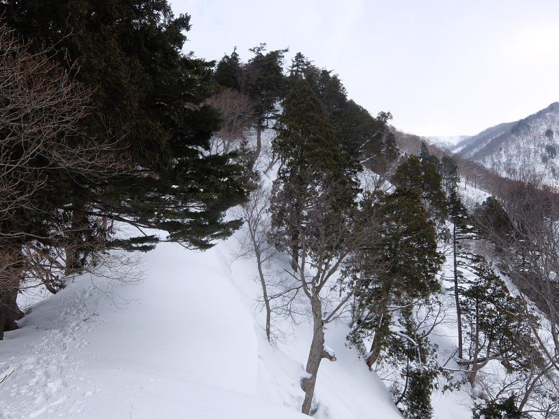 2017-03_kasagatake_0010