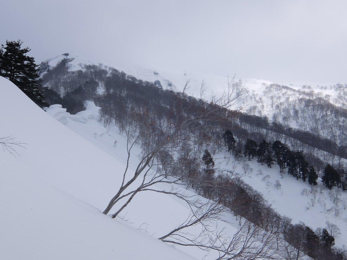 2017-03_kasagatake_0016