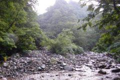 2019-08_yakuwa_0011