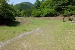 2016-05_tanzawa_mitsuba-dake_jougao-ouge_0229